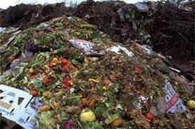 Στοιχεία για την παγκόσμια σπατάλη φαγητού και οργανώσεις με στόχο την εξάλειψη της