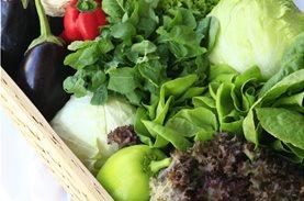 «Ο Φρεσκούλης δίπλα στα παιδιά με μια αγκαλιά φρούτα και λαχανικά» σε συνεργασία με το Μπορούμε